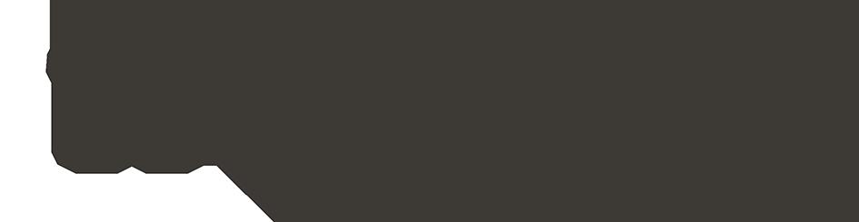 Wizdent_Reverse-Logo-on-green
